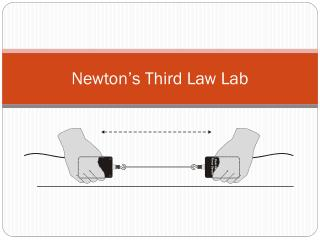 Newton's Third Law Lab