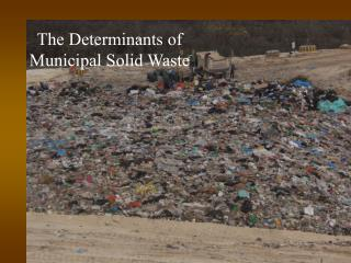 The Determinants of  Municipal Solid Waste