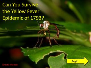 Can You Survive the Yellow Fever Epidemic of 1793?