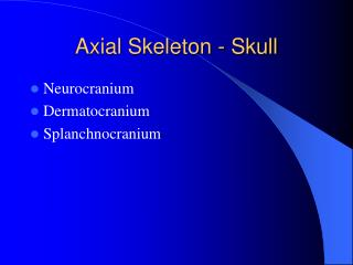 Axial Skeleton - Skull