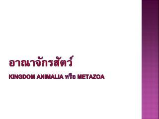 อาณาจักรสัตว์ Kingdom  Animalia หรือ  Metazoa