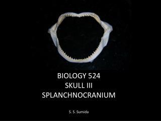 BIOLOGY 524 SKULL III SPLANCHNOCRANIUM S. S. Sumida