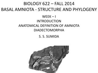 BIOLOGY 622 – FALL 2014 BASAL  AMNIOTA - STRUCTURE  AND PHYLOGENY WEEK – I INTRODUCTION
