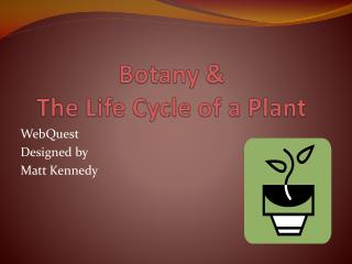 Botany &      The Life Cycle of a Plant