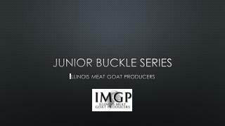 Junior buckle series