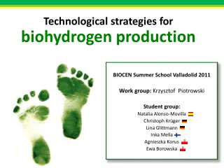 BIOCEN  Summer School  Valladolid 2011 Work group :  Krzysztof Piotrowski Student group :