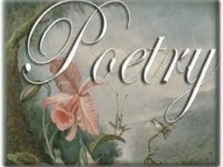 POETRY IS..... TAKE 5 MINUTES TO WRITE ABOUT YOUR FEELINGS TOWARDS POETRY