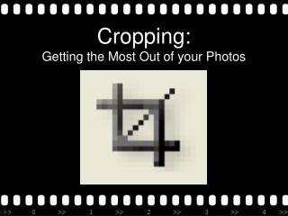 Cropping:  Getting the Most Out of your Photos