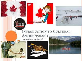 Introduction to Cultural Anthropology