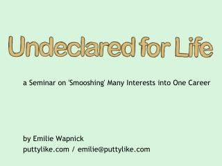 a Seminar on 'Smooshing' Many Interests into One Career by Emilie Wapnick