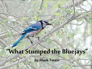 """What Stumped the  Bluejays ""  by  Mark Twain"