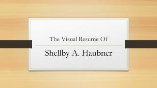 The Visual Resume Of