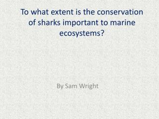 To what extent is the conservation of sharks important to marine ecosystems?