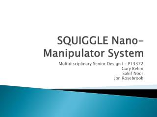 SQUIGGLE Nano-Manipulator System