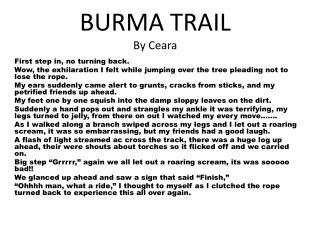 BURMA TRAIL By Ceara