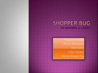 Shopper Bug By: Gwyneth  A. Lovell