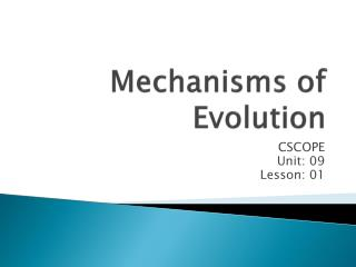 Mechanisms of Evolution