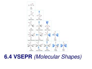 6.4 VSEPR  (Molecular Shapes)