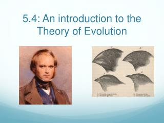 5.4: An introduction to the Theory of Evolution