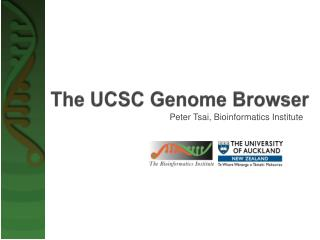The UCSC Genome Browser
