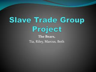 Slave Trade Group Project