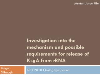 Investigation into the mechanism and possible requirements for release of KsgA from  rRNA