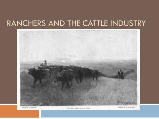 Ranchers and the Cattle Industry