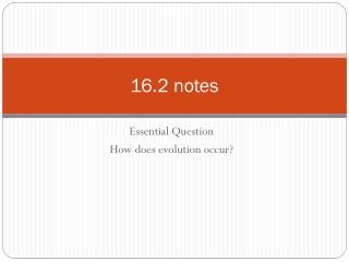 16.2 notes