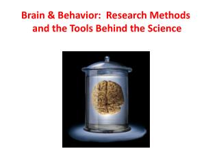 Brain & Behavior:  Research Methods  and the Tools Behind the Science