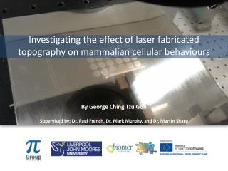Investigating the effect of laser fabricated topography on mammalian cellular behaviours