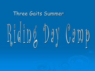 Riding Day Camp