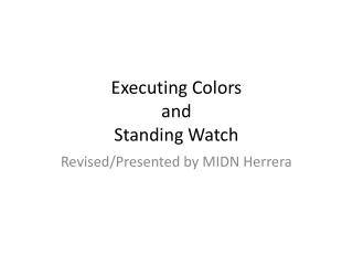 Executing Colors and Standing Watch