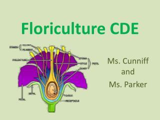 Floriculture CDE