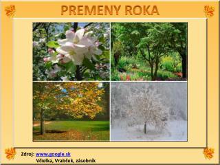 PREMENY ROKA