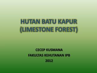 HUTAN  BATU KAPUR (LIMESTONE FOREST)