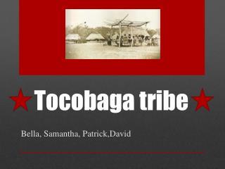 Tocobaga  tribe