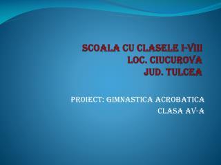 SCOALA CU CLASELE I-VIII  LOC. CIUCUROVA JUD. TULCEA