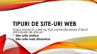 Tipuri de site-uri Web