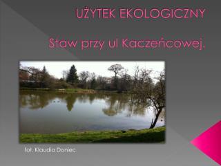 UŻYTEK EKOLOGICZNY Staw przy ul Kaczeńcowej.