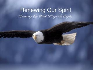 Renewing Our Spirit