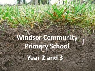 Windsor Community Primary School