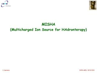 MISHA ( Multicharged Ion  Source  for HAdronterapy )