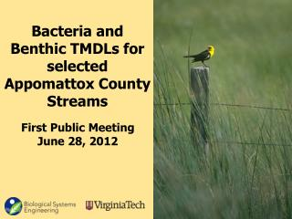 Bacteria and Benthic TMDLs for selected  Appomattox  County Streams