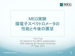 MEG 実験 陽電子スペクトロメータの 性能と今後の展望