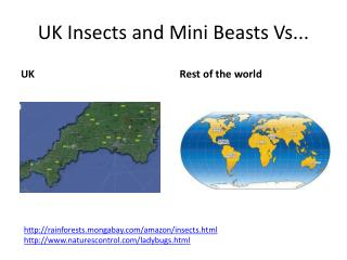 UK Insects and Mini Beasts Vs...