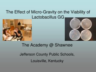 The Academy @ Shawnee Jefferson County Public Schools,  Louisville, Kentucky