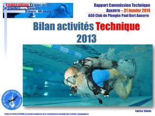 Bilan activités  Technique  2013