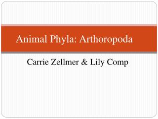 Animal Phyla:  Arthoropoda