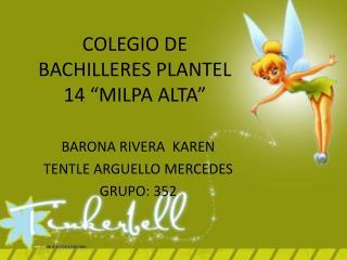 "COLEGIO DE BACHILLERES PLANTEL 14 ""MILPA ALTA"""