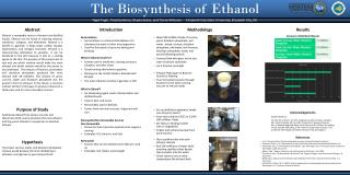 The Biosynthesis of  Ethanol